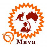 Mava International Study